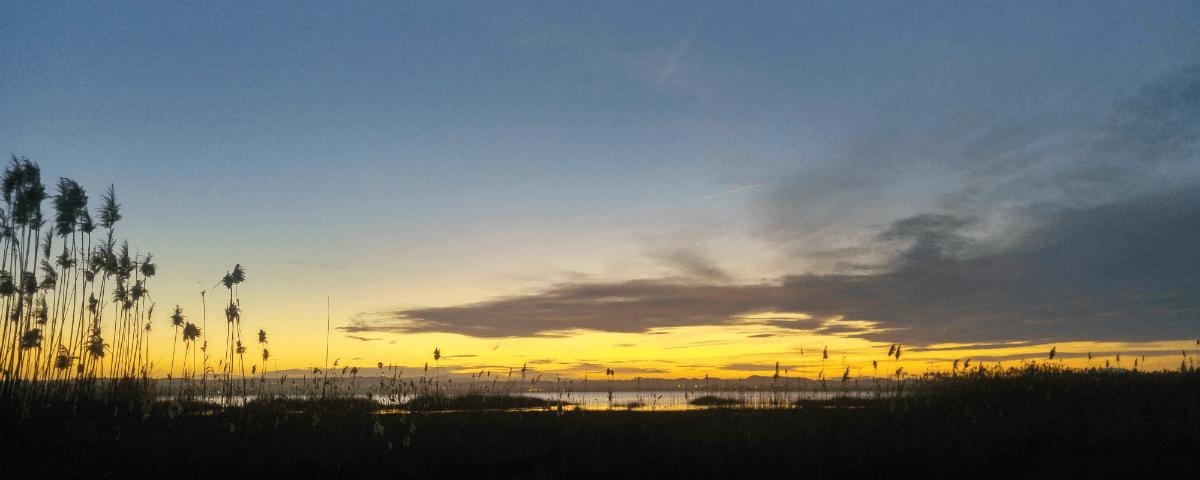 Stromanbieter wechseln Ökostrom Prämie