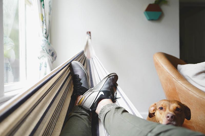 Mann mit Hund in Hängematte